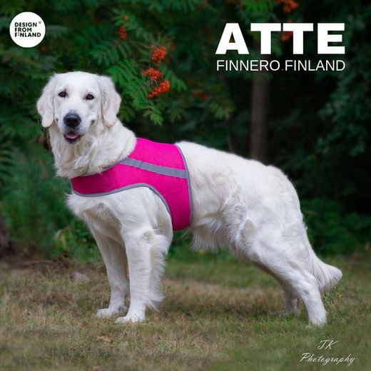 Martta wears pink ATTE attention vest size XL photo: Tiina Korhonen / TK Photography