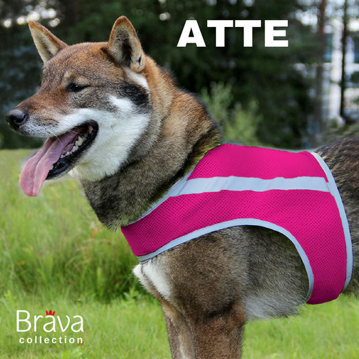 ATTE attention vest pink