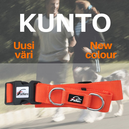 KUNTO training hands free waist belt orange
