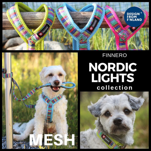 Nordic Lights Mesh collection
