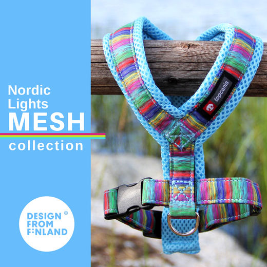 Nordic Lights Mesh sky blue