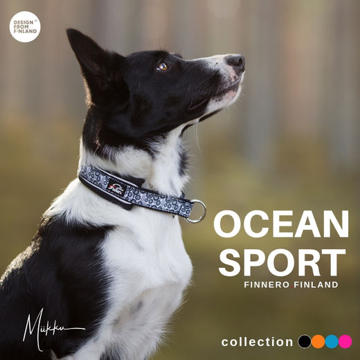 OCEAN collar with black neoprene padding photo: Miikku