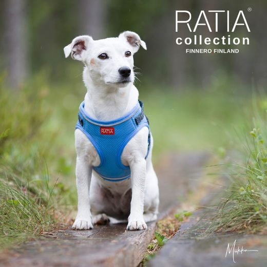 Eden and hers Ratia Mesh vest harness sky blue size S photo: Miikku Pietilä / MiikKuvaan