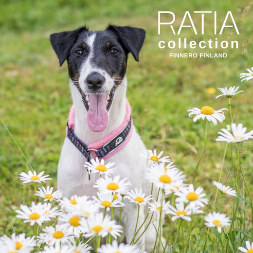 RATIA SOFT collar pink and size 1 photo: Tiina Korhonen / @tassutteluayhdessa