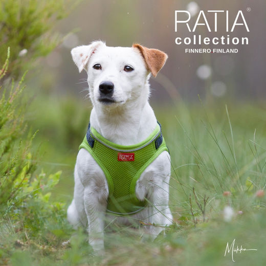 RATIA vest harness lime photo: Miikku Pietilä