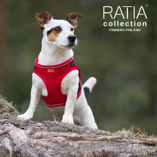 RATIA vest harness red and size S photo: Miikku Pietilä