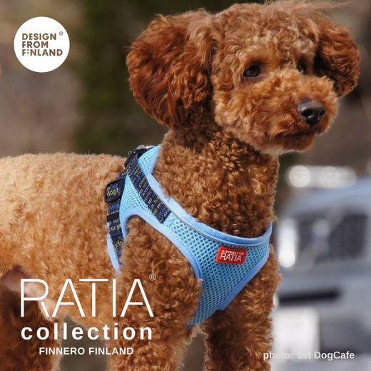 RATIA vest harness sky blue photo: 1stDogCafe
