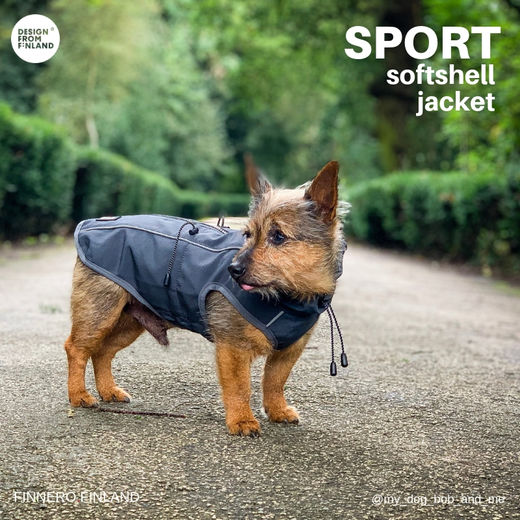 Bob and his new SPORT jacket photo: Stacey Kirk/ @my_dog_bob_and_me and Arctic Wolf UK